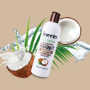 Pourquoi la noix de coco?